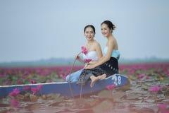 Bello giacimento di fiore del loto al mare rosso del loto Immagini Stock Libere da Diritti