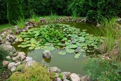 Bello giardinaggio classico dello stagno di pesci del giardino Immagine Stock