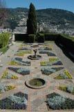 Bello giardino Immagini Stock