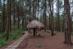 Bello giardino con il gazebo ed il passaggio pedonale nella catena montuosa di Menoreh, Indonesia fotografie stock