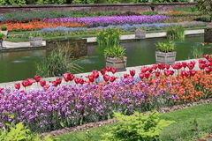 Bello giardino convenzionale Fotografia Stock Libera da Diritti