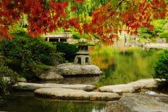 Bello giardino giapponese in autunno Immagini Stock Libere da Diritti