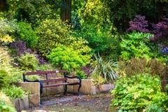Bello giardino inglese variopinto durante la stagione di caduta, Inghilterra, U Immagine Stock Libera da Diritti