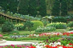 Bello giardino in primavera Immagine Stock