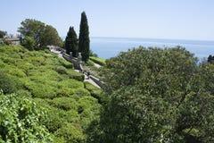 Bello giardino soleggiato verde con un Mar Nero nei precedenti Fotografia Stock Libera da Diritti