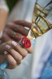 Bello giorno delle nozze Immagini Stock