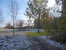 Bello giorno soleggiato di autunno nella foresta Fotografia Stock Libera da Diritti
