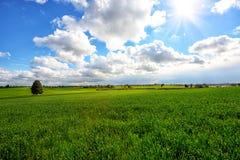 Bello giorno soleggiato in Israele nell'inverno Immagini Stock Libere da Diritti