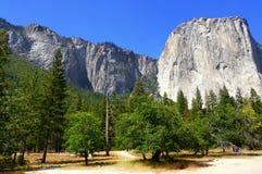 Bello giorno soleggiato in parco nazionale di Yosemite, California, U.S.A. Immagini Stock