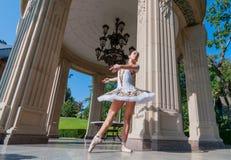 Bello giovane dancing della ballerina, stante dentro Immagine Stock Libera da Diritti