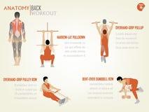 Bello grafico di informazioni di progettazione dell'allenamento posteriore addominale Fotografie Stock Libere da Diritti