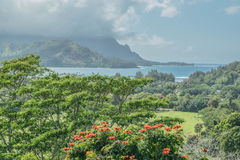 Bello Hanalei Immagine Stock