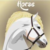 bello illusteation di progettazione della carta da parati di arte del cavallo bianco Fotografia Stock