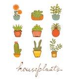 Bello insieme delle piante da appartamento disegnate a mano illustrazione di stock