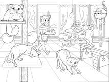 Bello interno del caffè moderno del gatto per l'illustrazione di vettore del fumetto della gente Immagine Stock