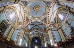 Bello interno della cattedrale Immagini Stock