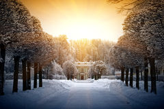 Bello inverno in Kuskovo immagini stock
