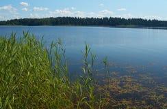 Bello lago Immagini Stock