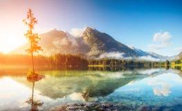 Bello lago alpino Fotografia Stock Libera da Diritti