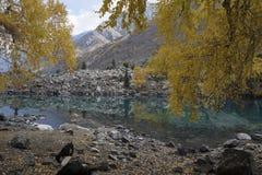 Bello lago in autunno Immagini Stock Libere da Diritti