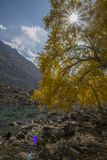 Bello lago in autunno Immagine Stock Libera da Diritti