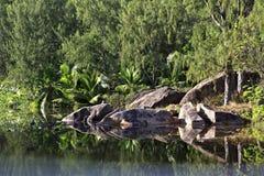Bello lago con i blocchi di pietra vicino al Le Fotografie Stock