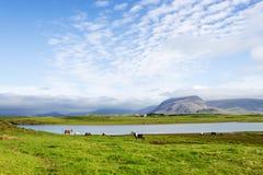 Bello lago contro il fondo della montagna, Islanda, buona estate Fotografie Stock Libere da Diritti