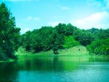 Bello lago coperto dalle colline verdi fotografia stock libera da diritti