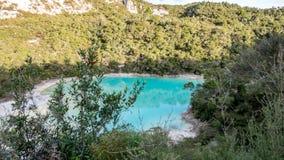 Bello lago dell'acqua blu nel Distretto di Rotorua, Nuova Zelanda immagini stock