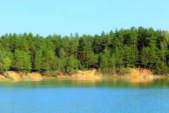 Bello lago della foresta con i pini Fotografie Stock