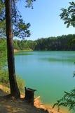 Bello lago della foresta con i pini Immagini Stock