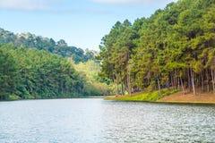 Bello lago della foresta, Mae Hong Son, Pang Ung, Tailandia Fotografia Stock Libera da Diritti