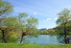 Bello lago della sorgente Fotografie Stock