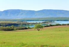Bello lago della sorgente Fotografia Stock