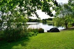 Bello lago fishing immagini stock libere da diritti