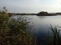 Bello lago nel parco naturale di Vacaresti, città di Bucarest, Romania Fotografia Stock