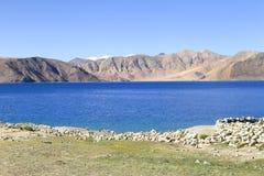 Bello lago Pangong del turchese in Leh, India Fotografia Stock Libera da Diritti