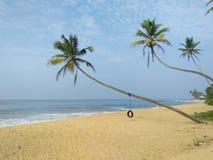 bello lato della spiaggia dello sri lankan Immagini Stock