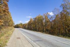 Bello legno di autunno fotografia stock