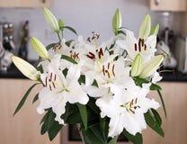 Bello Lillies nella cucina Immagine Stock