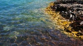 Bello litorale Fotografia Stock Libera da Diritti