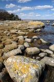 Bello litorale di mare svedese Fotografie Stock
