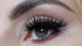 Bello macro colpo dell'occhio femminile con i cigli lunghi estremi Volto perfetto, trucco e sferze lunghe archivi video