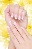 Bello manicure della Francia Immagine Stock