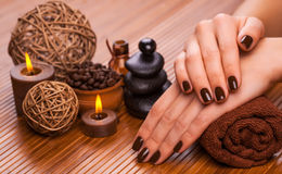 Bello manicure marrone su un fondo di bambù Fotografia Stock