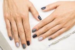 Bello manicure sulle mani della ragazza Immagine Stock Libera da Diritti