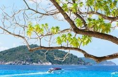 Bello mare blu a Koh Miang in MU Koh Similan, Tailandia Immagine Stock Libera da Diritti