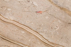 bello marmo naturale nei colori caldi e luminosi Fotografia Stock Libera da Diritti