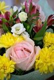 Bello mazzo con le rose rosa, i crisantemi gialli ed il alstroemeria porpora Mazzo tenero della molla Immagine Stock Libera da Diritti