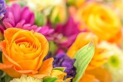 Bello mazzo dei fiori con la rosa di giallo, cartolina d'auguri, concentrata Fotografia Stock